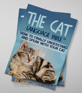 Cat Language Bible Cover