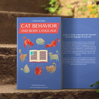 Free Ebook: Understanding Cat Behavior and Body Language