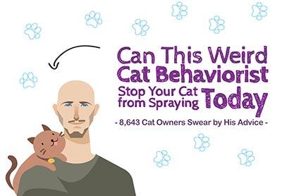 Stop Cat Spraying!